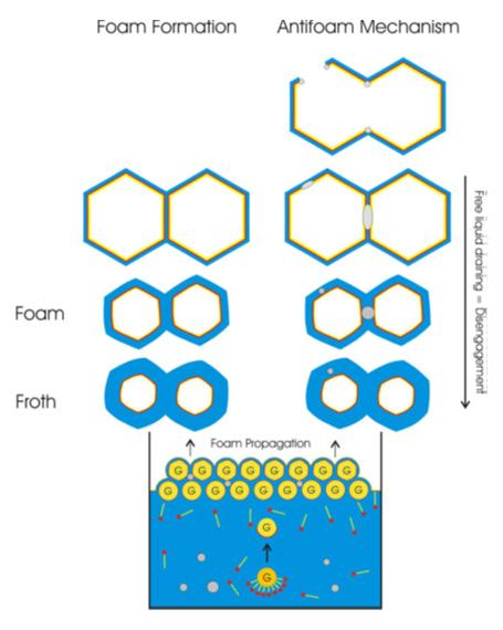 Using anti-foam in amine sweeting process